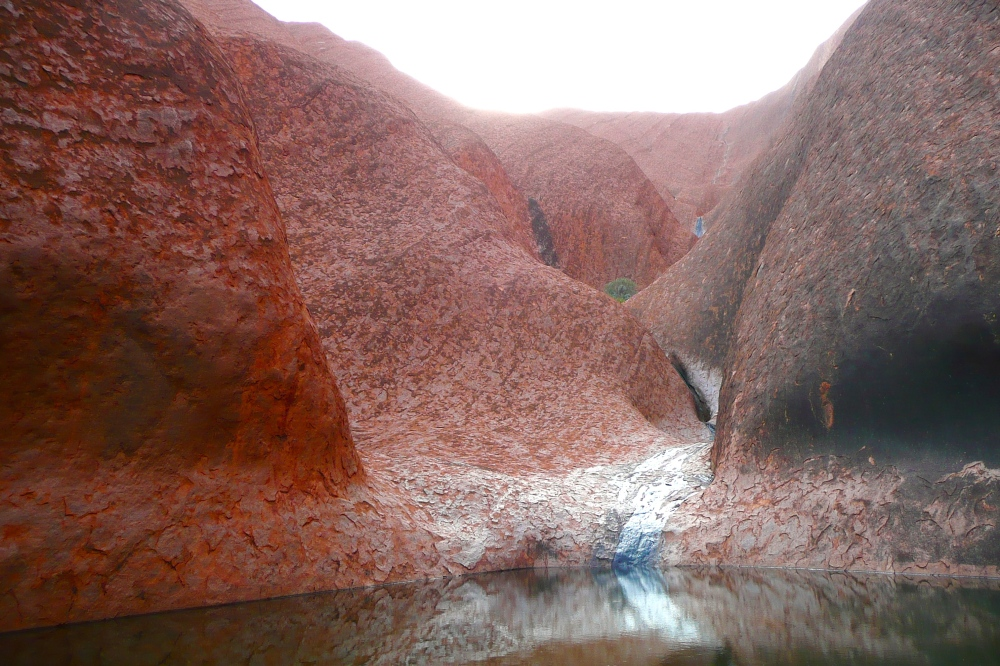 A waterhole at Uluru